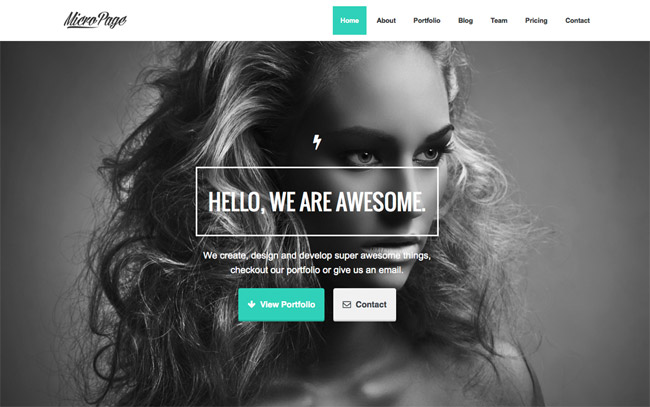 MicroPage WordPress Theme