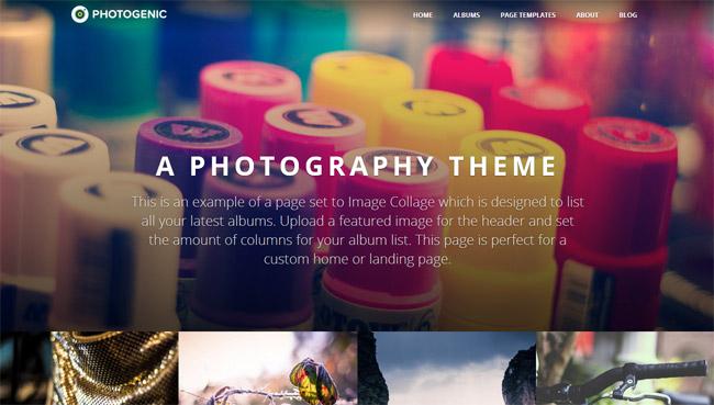 Photogenic WordPress Theme