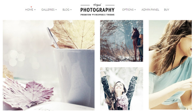 Tripod WordPress Theme