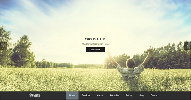 Vernum WordPress Theme