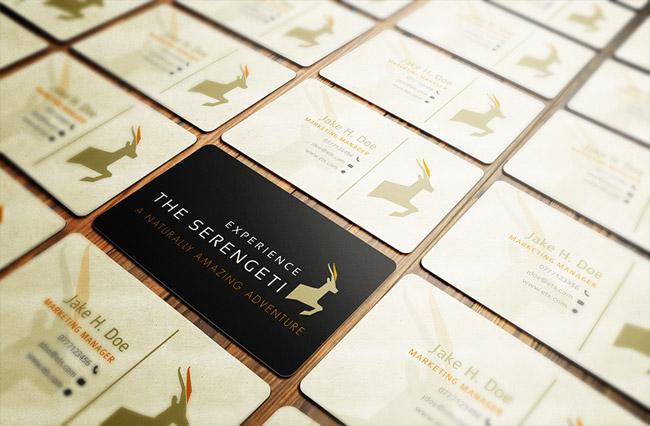 Experience The Serengeti Biz Cards