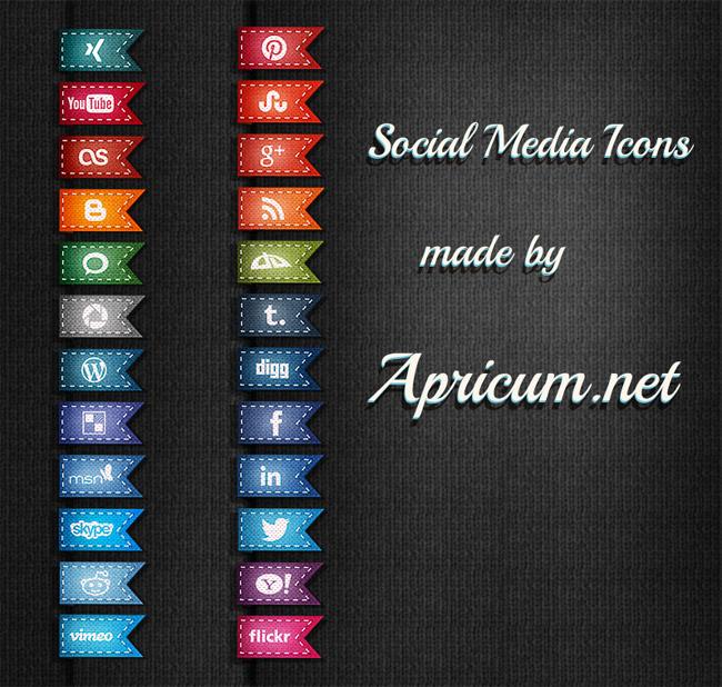 Apricum Social Media Icons