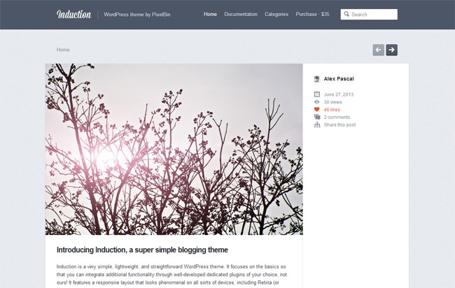 Induction WordPress Theme