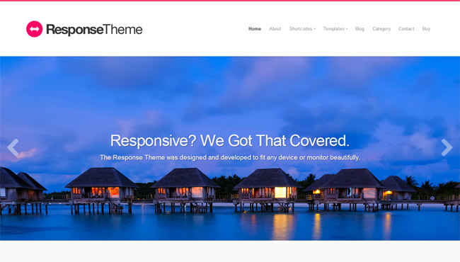 Responsive Theme WordPress Theme