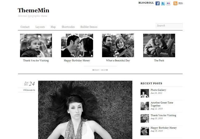 ThemeMin WordPress Theme