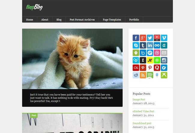 tinyBlog WordPress Theme