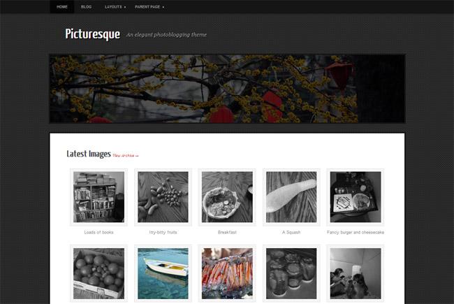 Picturesque Free WordPress Theme