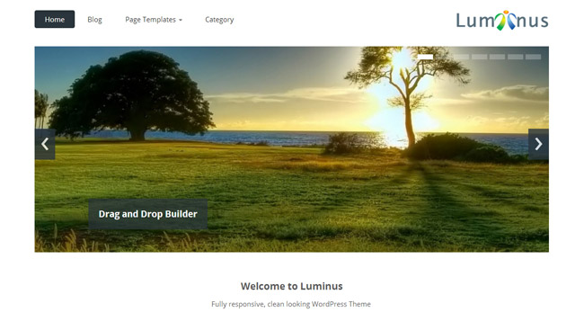 Luminus Free WordPress Theme