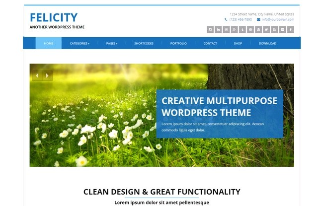 Felicity Free WordPress Theme