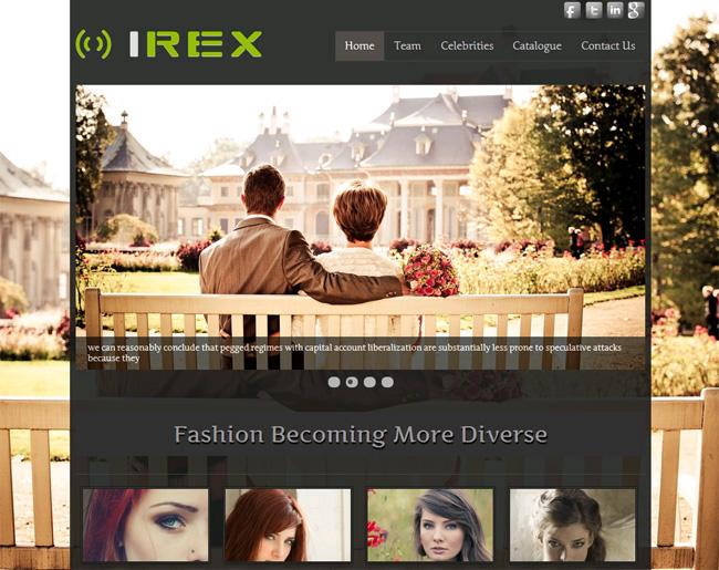 Irex Free WordPress Theme