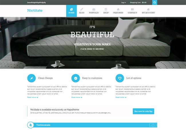 Nictitate Free WordPress Theme