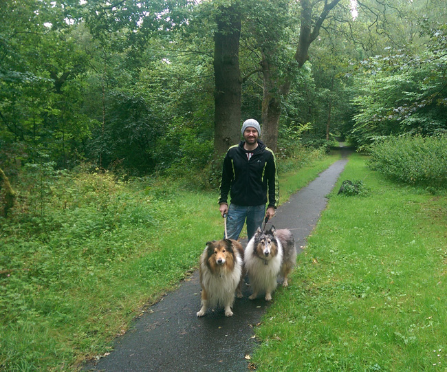 Taking the Dogs a Walk