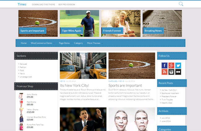 Times Free WordPress Theme