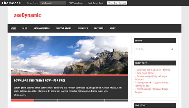 zeeDynamic Free WordPress Theme