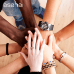 Organize Your Team with Asana