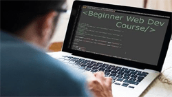 The Beginner Web Dev Bundle
