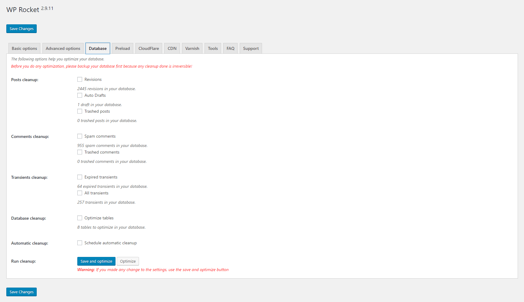 WP Rocket Database Options