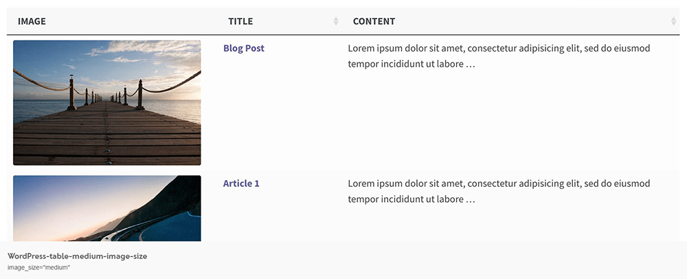 Example of a Blog Post Table