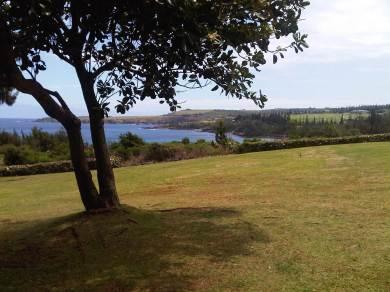 Maui 2011 - Burial ground