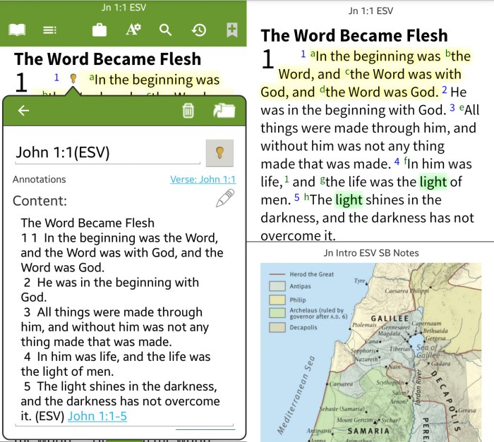 bible by olive tree kindle fire bible app