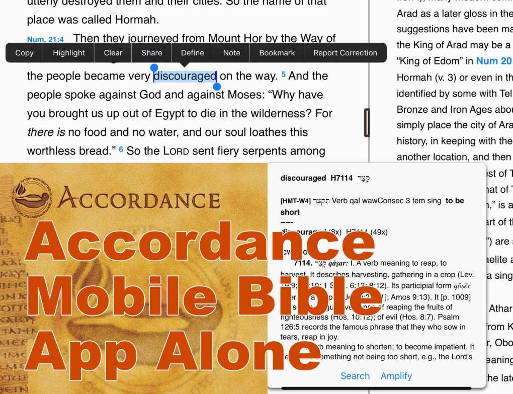 accordance-mobile