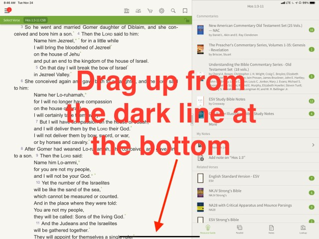 drag up from dark line to start slide over on ipad