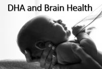 DHA and Brain Health as evidence for a meat-based diet
