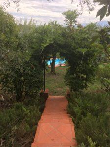 pool Fattoria Colle Verde