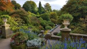 Italy Biddulph Grange steps planting