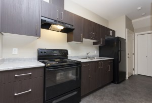 Secondary Suite Kitchen