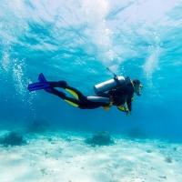 reef-restoration-home-200x200