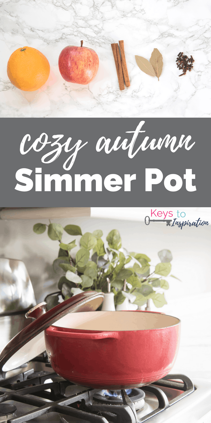 A cozy autumn simmer pot recipe to make your home smell amazing. Fill your home with natural scents instead of burning candles. This is perfect for fall!