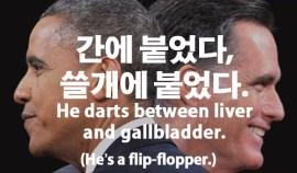 46-flip-flopper