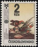 CINOVSKY_02