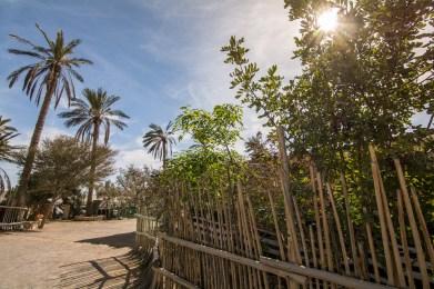 Kfar Hanokdim Desert Oasis