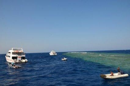 elphinstone-reef (1)