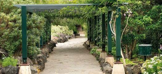 jardin_botanico_viera_y_clavijo-gran_canaria_3