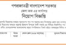Photo of জেলা জর্জ আদালতে নিয়োগ বিজ্ঞপ্তি ( অষ্টম শ্রেণি পাশ )