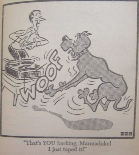 THE ONLY THING THAT SCARES MARMADUKE IS MARMADUKE