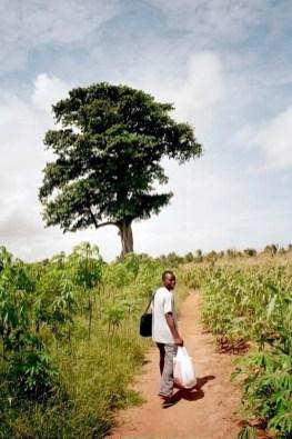 Kofie and the Spirit Tree