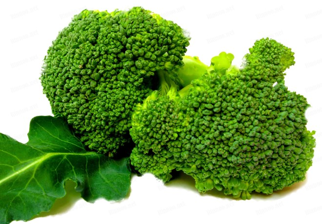 1057_Broccoli_W_BL_0x0