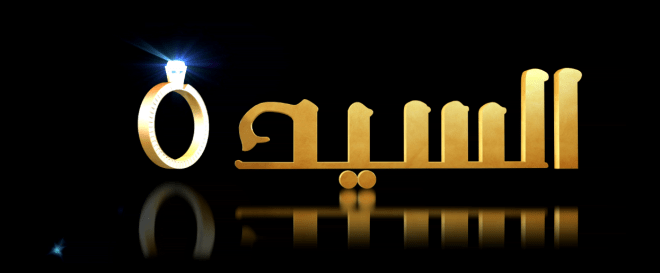 logo sayyida picture