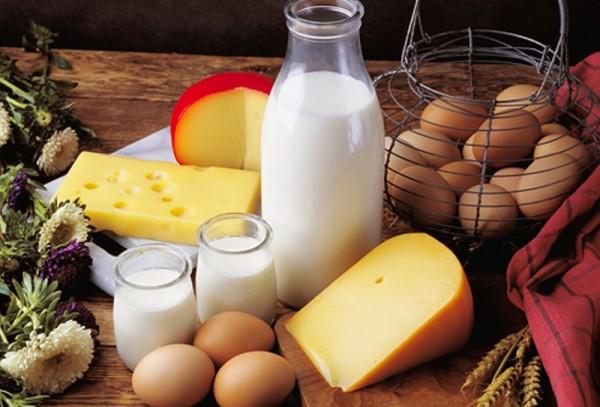 High-Quality-Dairy-Foods.jpg-new-600x407