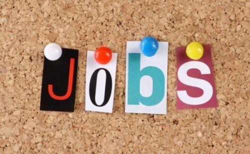 युवाओं के लिए नौकरी पाने का सुनहरा मौका, पंचायत राज विभाग में जूनियर पंचायत सचिवों की निकली भर्ती