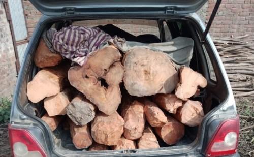 उत्तराखंड: पुलिस ने एक गोदाम से लाखों की अवैध लकड़ी की बरामद