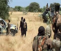 नाइजर में सेना ने बोको हरम के 280 आतंकवादी मार गिराए