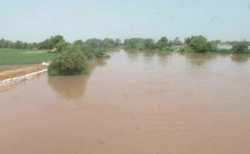 HR: घग्गर नदी पर जलस्तर बढ़ने से किसानों की चिंता बढ़ी