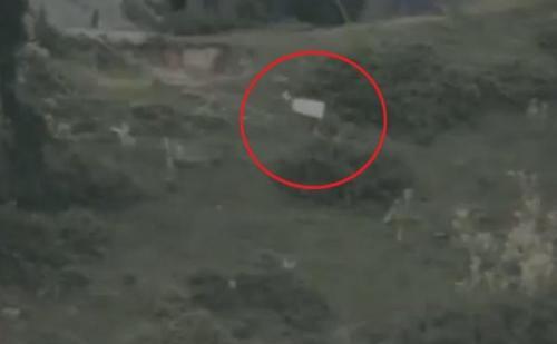 मुठभेड़ में मारे गए आतंकी का शव लेने आए पाकिस्तानी, सफेद झंडे दिखाकर शव ले जानें की ली अनुमति, वीडियो वायरल