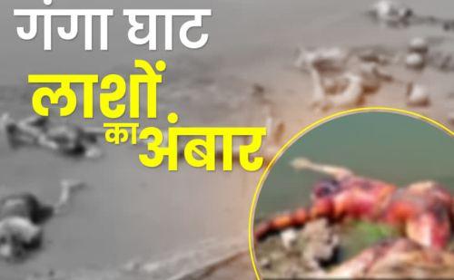 बिहार: बक्सर में गंगा किनारे लाशों का अंबार , प्रशासन का दावा- सभी लाशें यूपी से बहकर आईं !