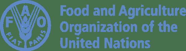 United Nations Internships